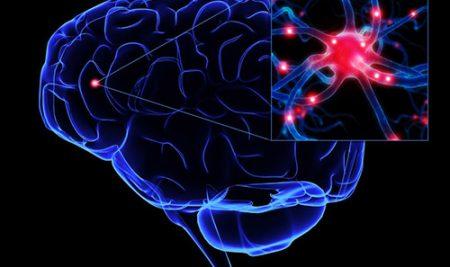 Synaptogenesis: Facilitating Plasticity