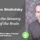 Podcast 20 – Pieces to the Sensory Puzzle of the Brain