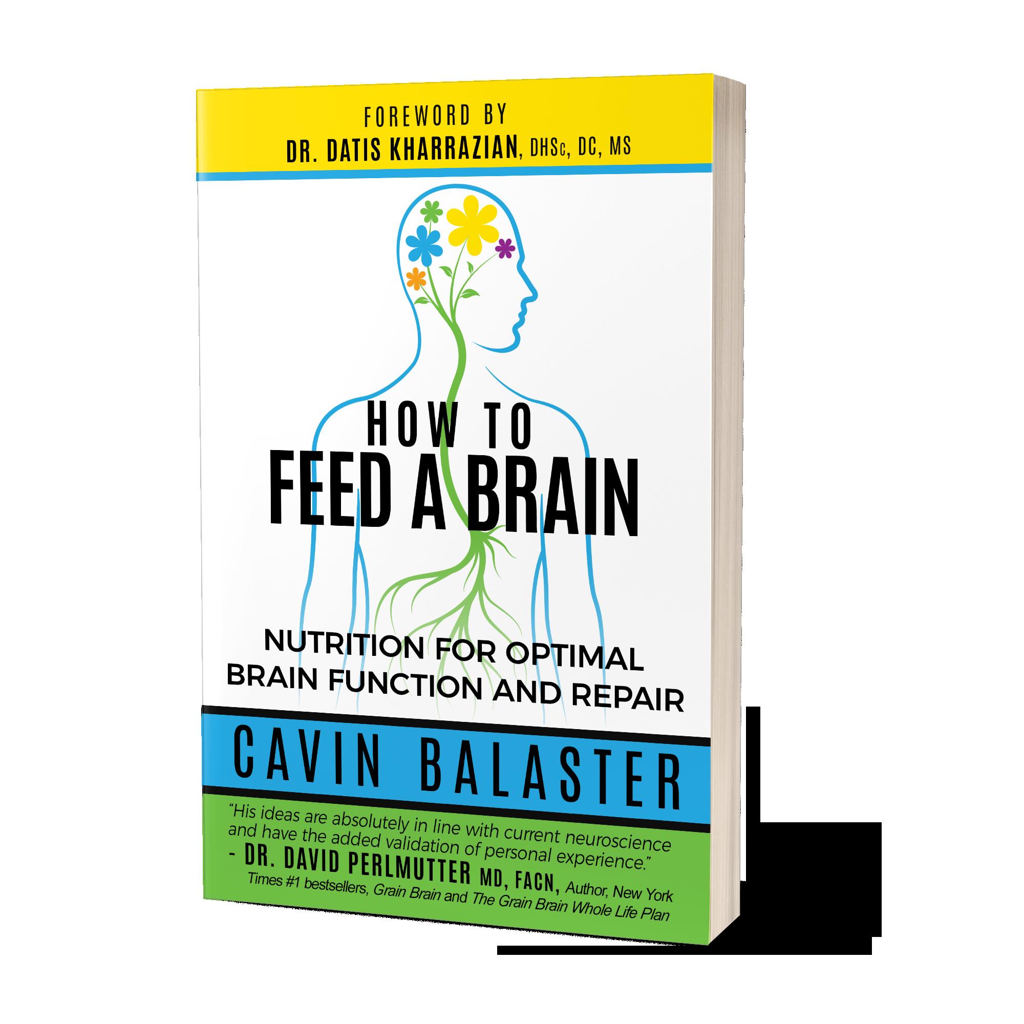 Brain Injury Rehabilitation Through Nutrition And Supplementation