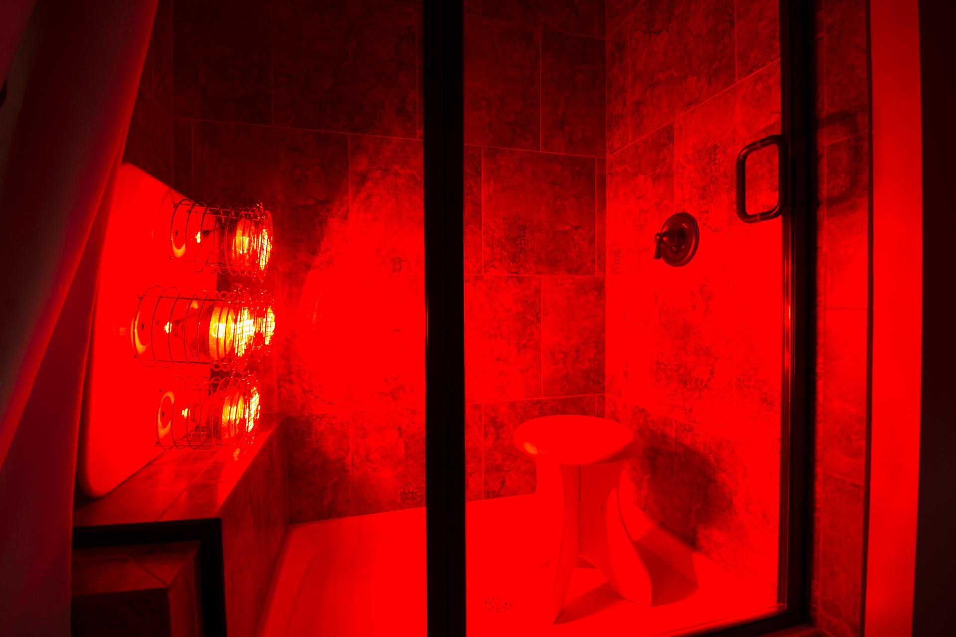 Near Infrared Sauna Shower Converter Bundle Learn How To Feed A Brain